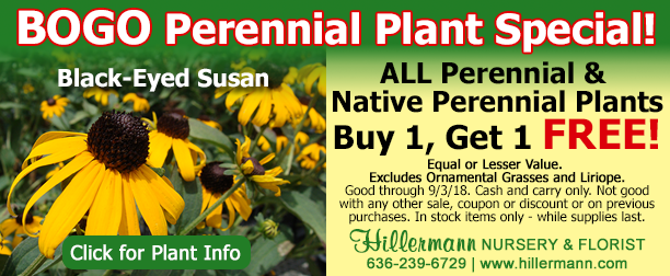 BOGO Perennial Plant Special at Hillermann Nursery and Florist - good through 9-3-18 - see banner for details
