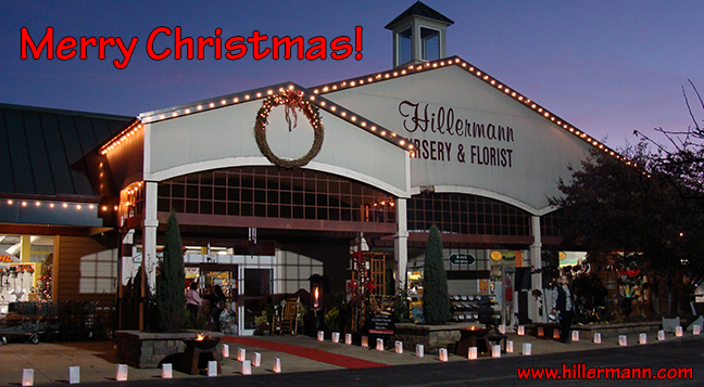 Hillermann heading picture of the store front with lights and luminaries for the Holiday Party and text - Merry Christmas. www.hillermann.com