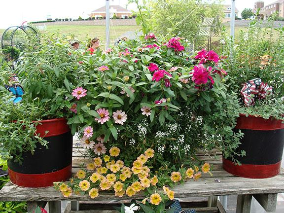 Container gardens at Hillermann Nursery and Florist