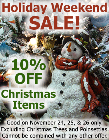 Holiday Weekend SALE!!  Picture with text - 10% OFF Christmas Items on 11-24-17, 11-25-17 and 11-26-17 only.