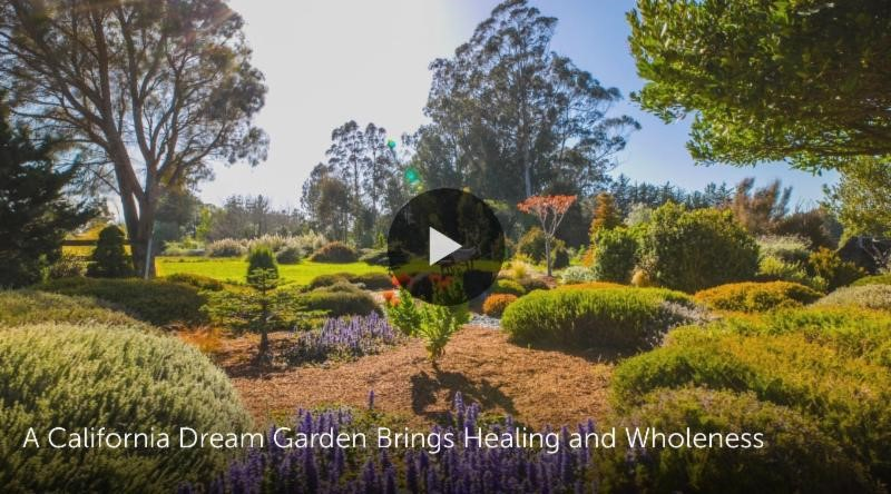 Image for video - A California Dream Garden Brings Healing and Wholeness on Houzz.com