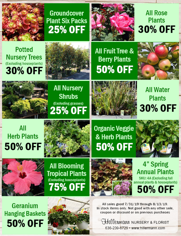 Hillermann Nursery and Florist Sales Sheet for 7-31-19 through 8-13-19