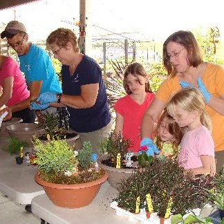 A Mini-Garden Make-N-Take Workshop in progress at Hillermann Nursery and Florist