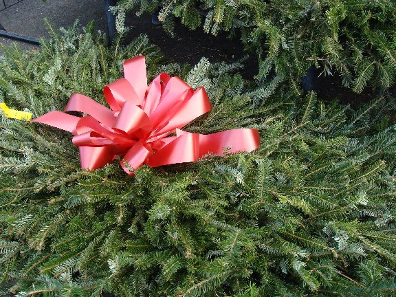 Fresh evergreen holiday decorating items available at Hillermann Nursery and Florist