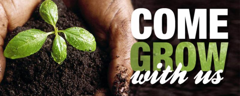 Seedling plant picture with wording - Come Grow With Us