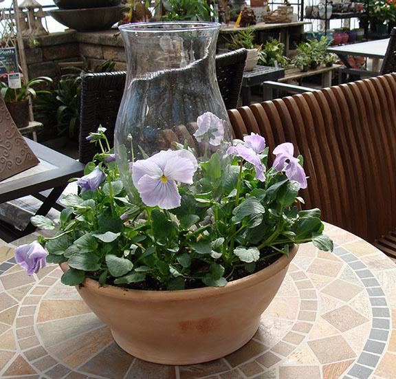 Flower Lantern Planter at Hillermann Nursery and Florist