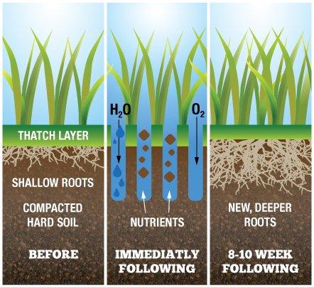 Lawn Aeration Diagram