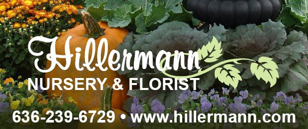 Picture of fall plants and a pumpkin with the Hillermann logo, phone number and website. Hillermann Nursery and Florist - www.hillermann.com