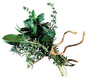 Herbs tied in a bundle