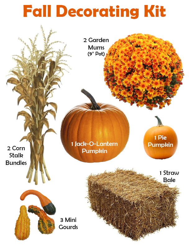 Fall Decorating Kit - Items included in the Fall Decorating Kit at Hillermann Nursery and Florist