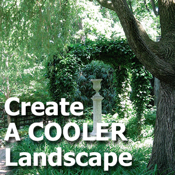 Shady garden picture with text - Create A Cooler Landscape