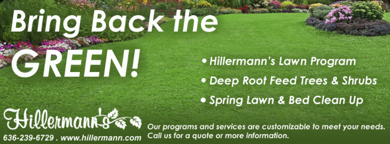 Bring Back the Green picture and text - Lawn Program, Deep Root Feed, Spring Lawn and Bed Clean Up - Services are customizable call for info or a quote. Hillermann Nursery and Florist - 636-239-6729