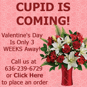 Cupid is coming - Valentines Day is only 3 weeks away. Call us at 636-239-6729 or visit hillermannflorist.com