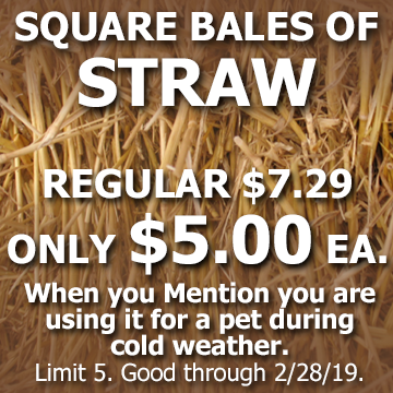 Straw bale special good through 2-28-19 at Hillermann Nursery and Florist