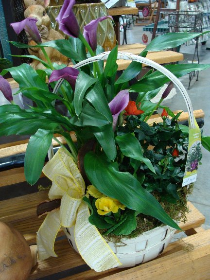 Blooming plant basket available at Hillermann Nursery and Florist