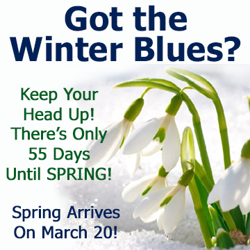 Got the Winter Blues -Keep your head up! There's only 55 days until SPRING! Spring Arrives on March 20!
