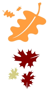 Fall colored leaves clip art