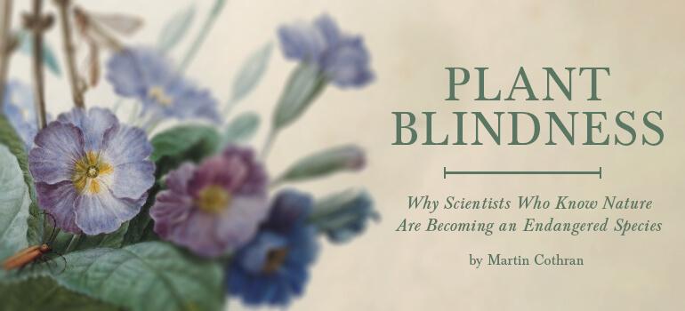 Plant Blindness image graphic from memoriapress.com