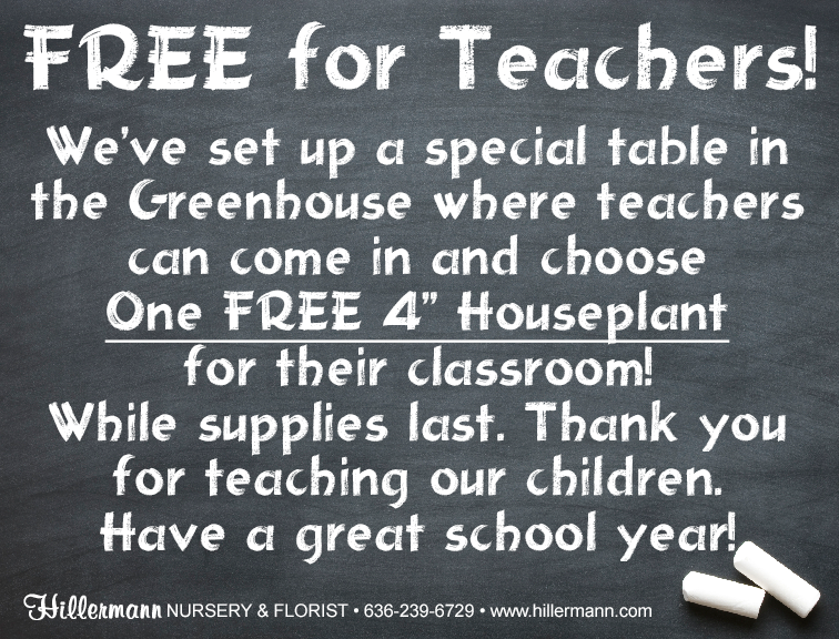 Free plant for teachers graphic - Hillermann Nursery and Florist