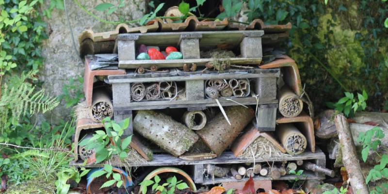 Insect Hotel picture from edenproject.com