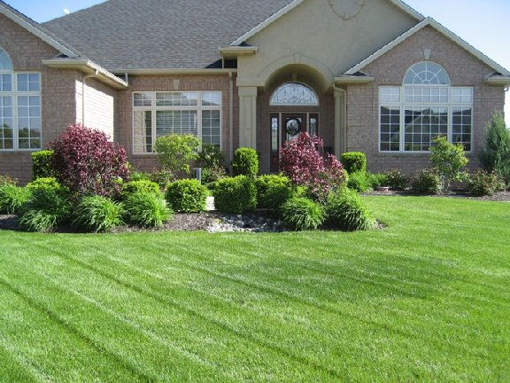 Home with nice lawn and landscaping