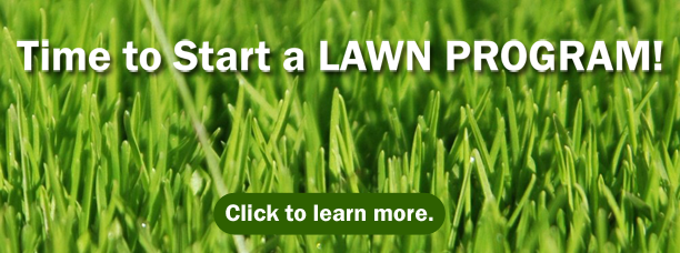 It's Time to Start a LAWN PROGRAM! Options available at Hillermann Nursery and Florist