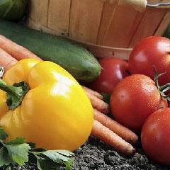 Fresh vegetables and a bushel basket