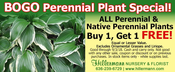 BOGO FREE Special at Hillermann Nursery and Florist - Good through 9-3-18