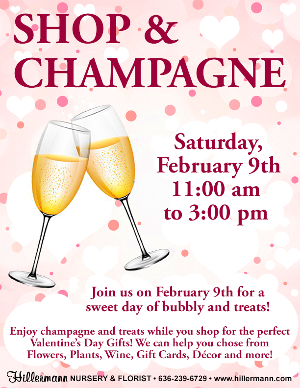 Shop and Champagne on 2-9-19 from 11.00 am to 3.00 pm - Champagne and Treats while you shop for Valentines Day gifts at Hillermann Nursery and Florist