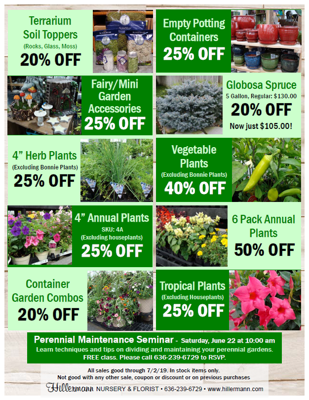 Specials available through 7-2-19 at Hillermann Nursery and Florist