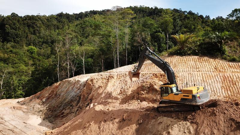 Deforestation. Destruction of Borneo rainforest for palm oil industry.