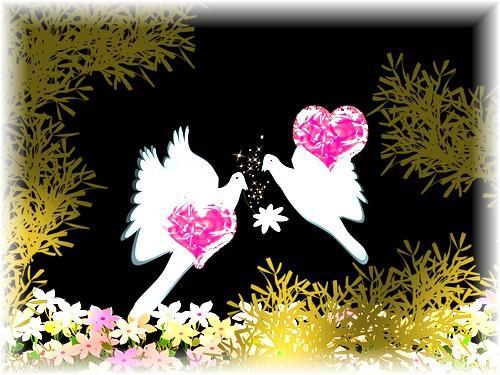 El amor da al amor