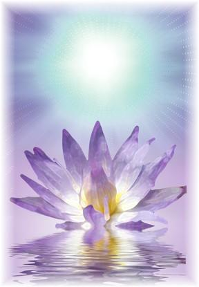 El Espíritu Santo ofrece solo la paz.