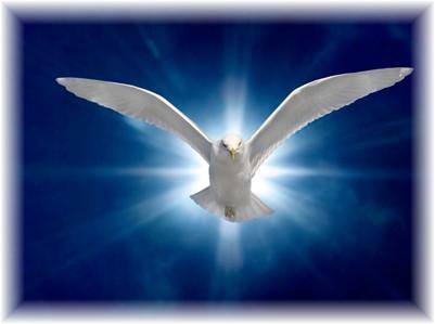 Guidance of the Holy Spirit
