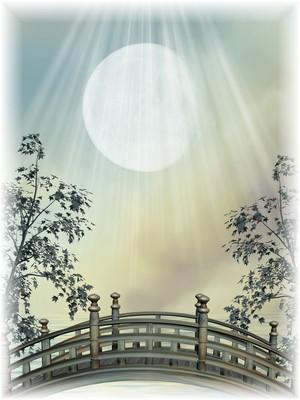 El puente es la transición