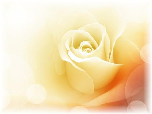 Symbol of God's Love