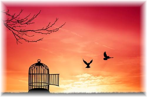 El cielo es tu voluntad