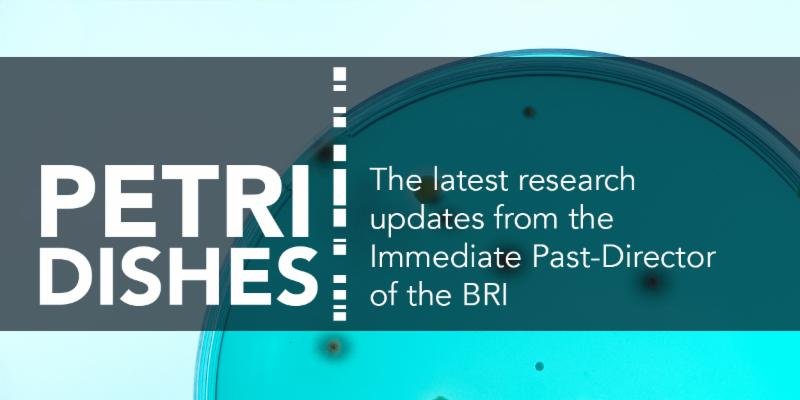 Petri Dishes: The latest research updates from the immediate past-director of the BRI