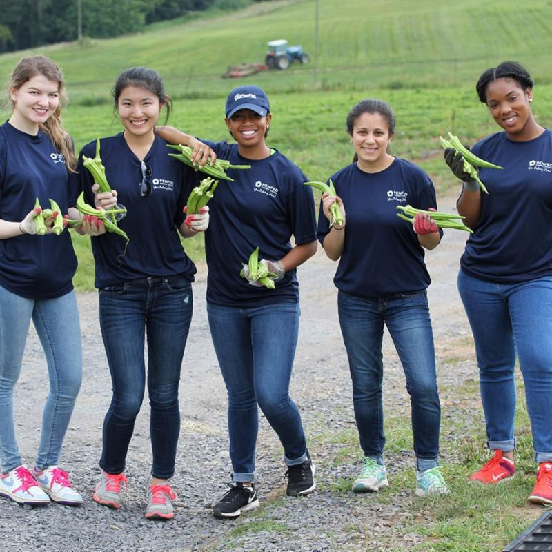 DC Central Kitchen volunteers harvesting crops