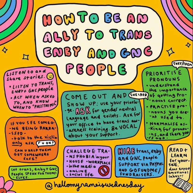 Audre Lorde Project how to be an ally cartoon