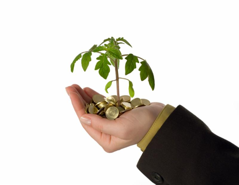 new_business_idea.jpg