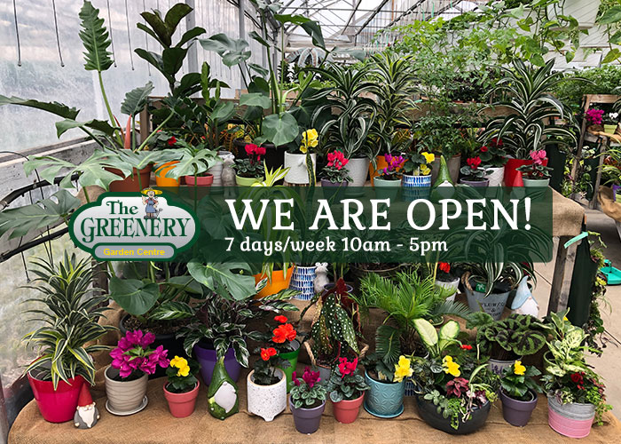 The Greenery is open