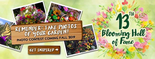Blooming Hall of Fame - Take Photos Reminder