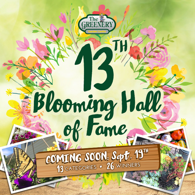 13th Annual Blooming Hall of Fame 2019