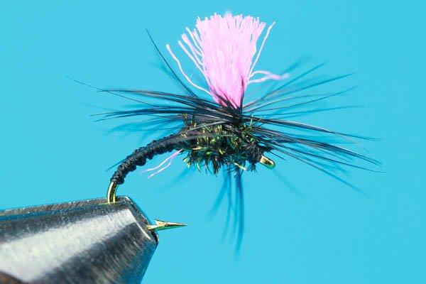 Free Flies w/Rod