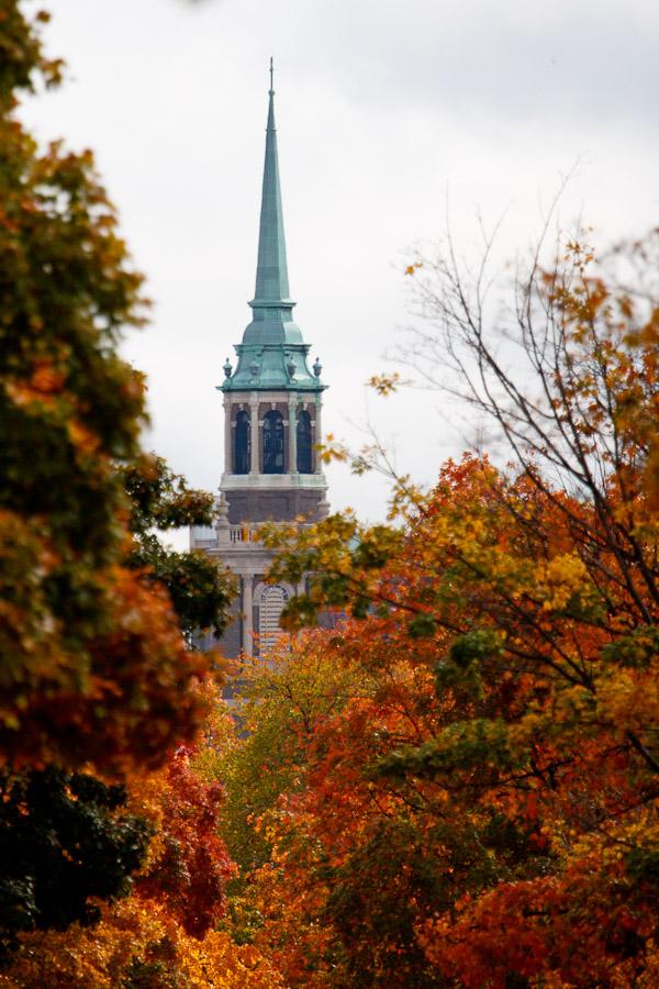 church steeple through fall trees