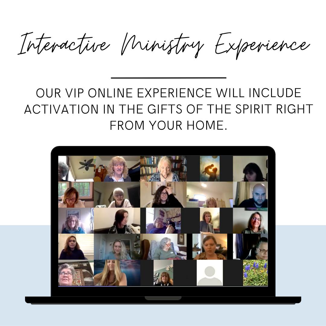 VIP Interactive Backstage Pass