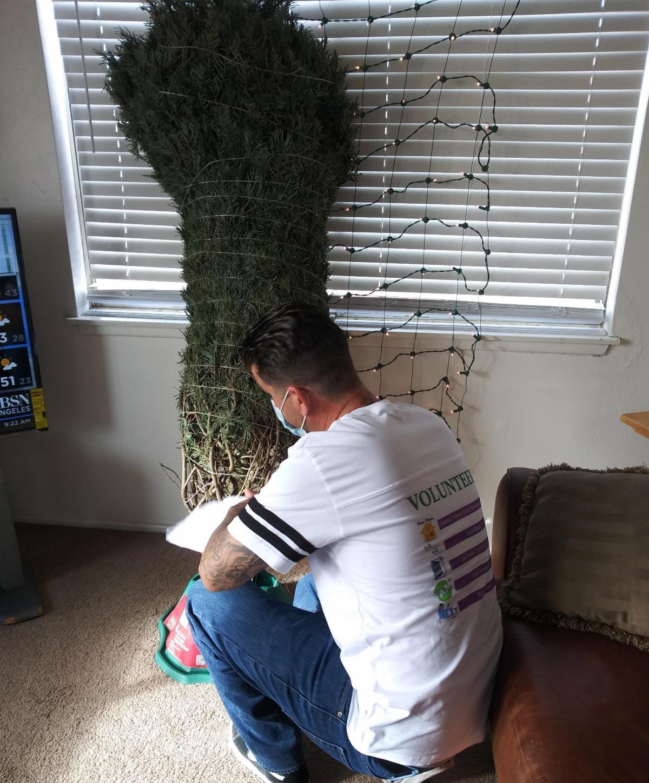 volunteer helping set up a christmas tree