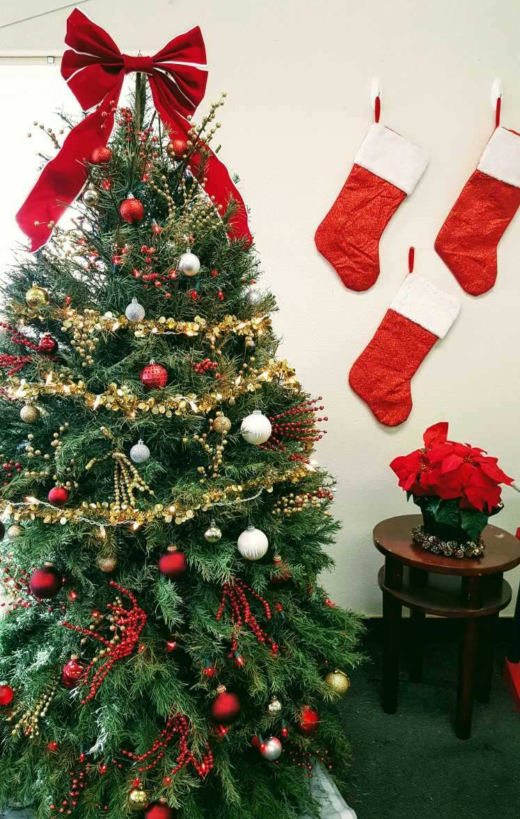 christmas tree with stockings on wall