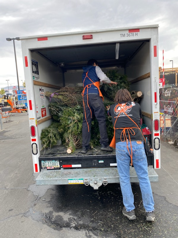 people unloading christmas trees from truck